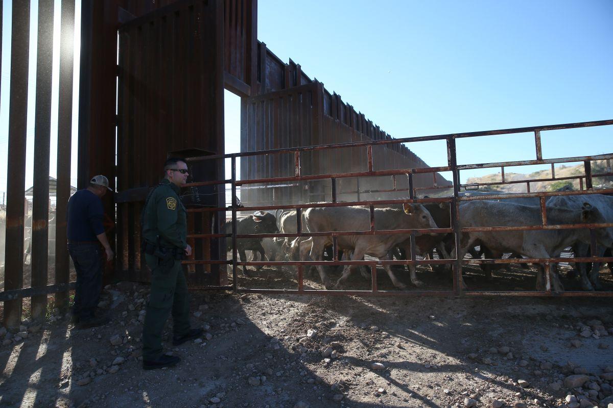 Rechazo al muro de Trump en el sur de la frontera