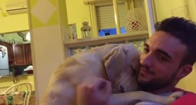 VIRAL: El tierno abrazo de un perro a su dueño para pedirle perdón (VIDEO)