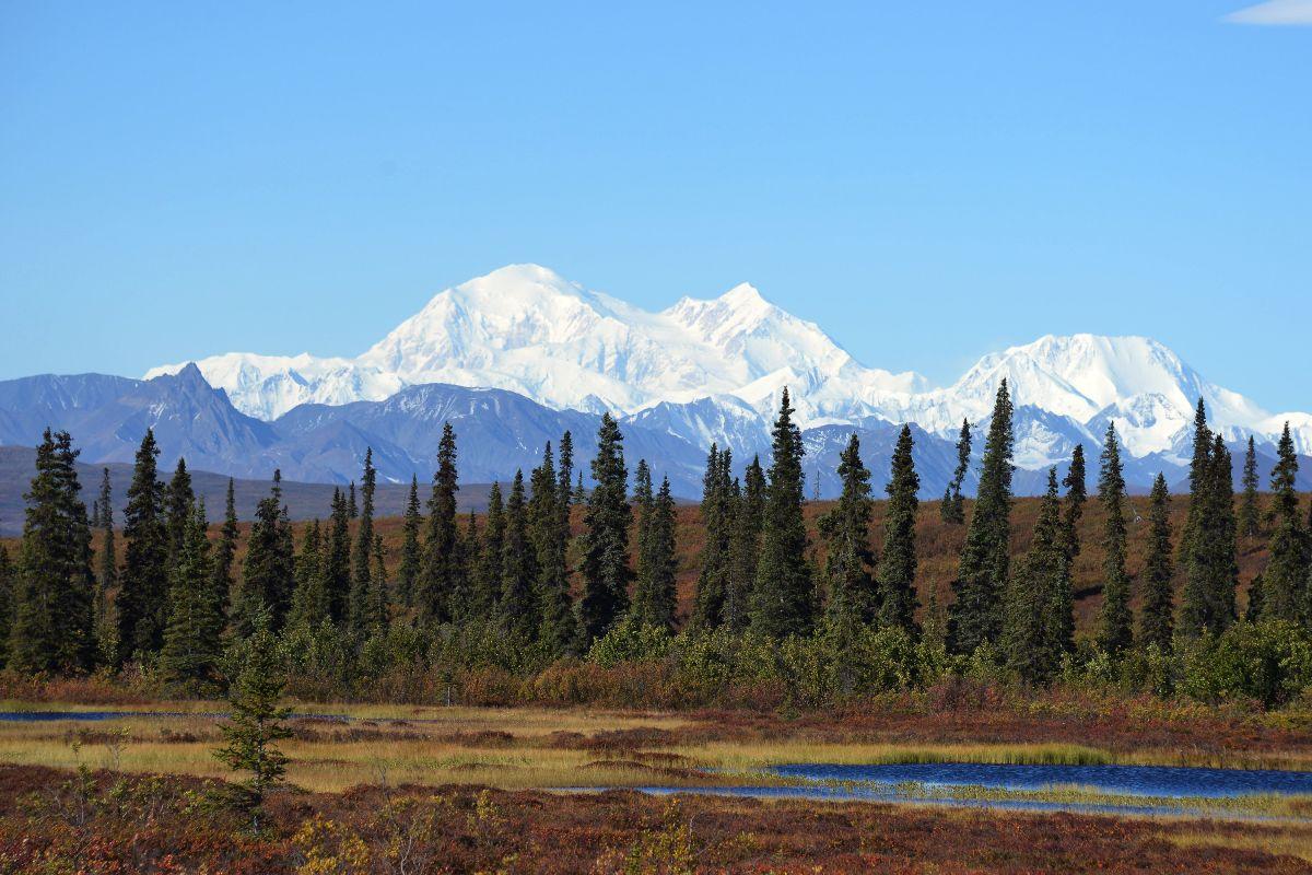 Voces de California: Alaska y la hipocresía