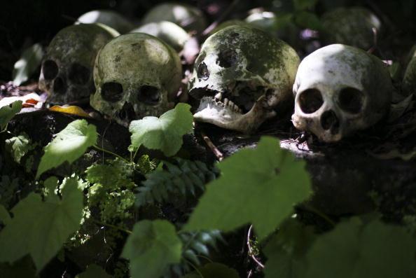 Encuentran cráneo humano en vecindario de Sylmar