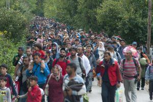 Hungría cierra su frontera con Serbia a los inmigrantes