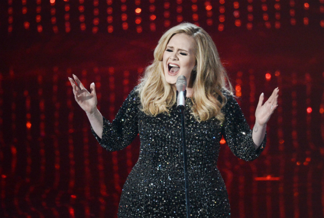 Video: Adele regañó a una fan en pleno concierto