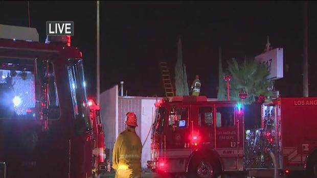 Incendio revela cultivo de marihuana en Sur Los Ángeles