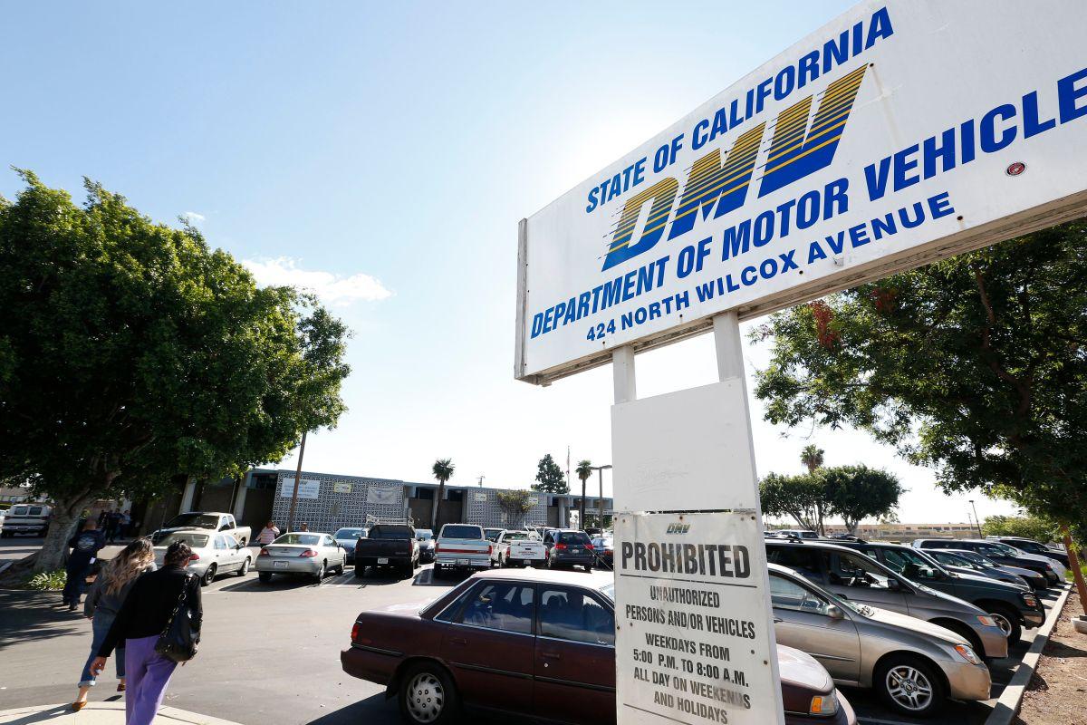 DMV: paga tus placas, saca la licencia y regístrate para votar