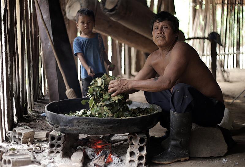 El daño al planeta es irreversible para los indígenas de la Amazonía