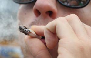 La mitad de los peleadores de MMA han fumado marihuana a lo largo de su carrera