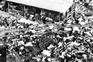 Jonestown: ¿Cómo ocurrió el mayor suicidio colectivo de la historia?