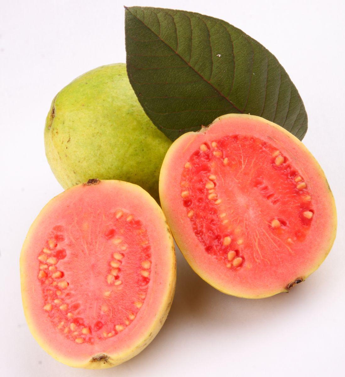 Extraordinaria infusión de hojas de guayaba para bajar de peso y desintoxicar el organismo