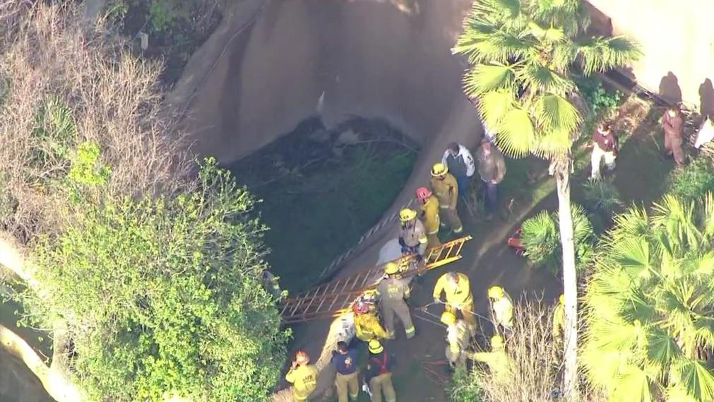 Bomberos acudieron al LA Zoo para rescatar al hombre.