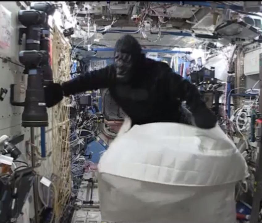 Video: ¿Qué hace un gorila en la Estación Espacial Internacional?