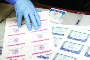 Seis meses de cárcel por falsificar green cards