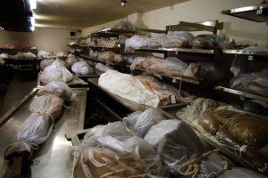"""""""Historia de terror"""": El negocio de donación de órganos que parecía un """"depósito de chatarra"""""""