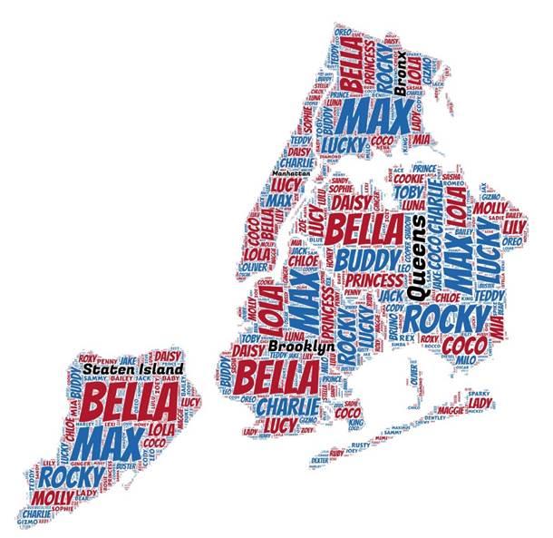 Nombres de perros más populares en Nueva York.