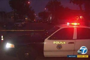 Hombre que portaba pistola de balines murió a manos de la policía