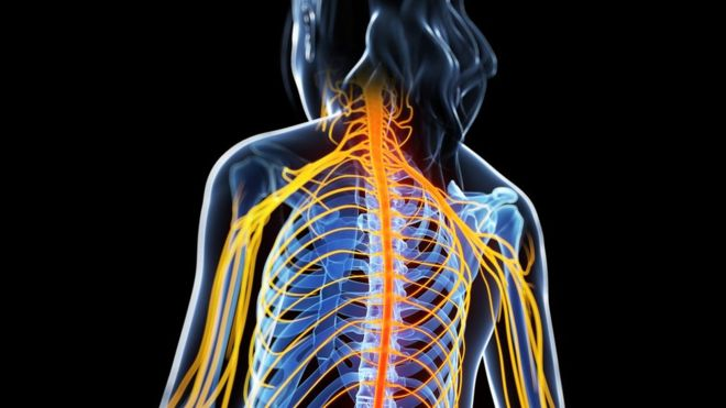 Enfermedad de las mil caras: conoce los síntomas de la esclerosis múltiple