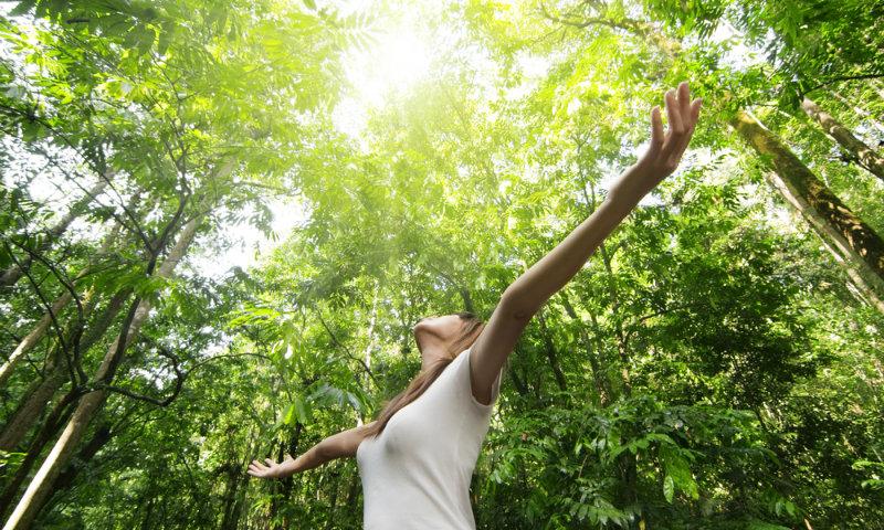 Convivir 30 minutos a la semana con la naturaleza te libra de problemas cardíacos