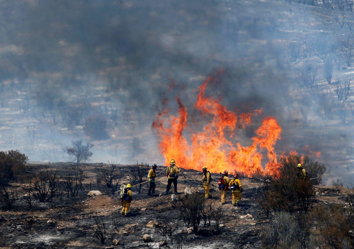 Destructivos y caros, el alto costo de luchar contra los incendios forestales