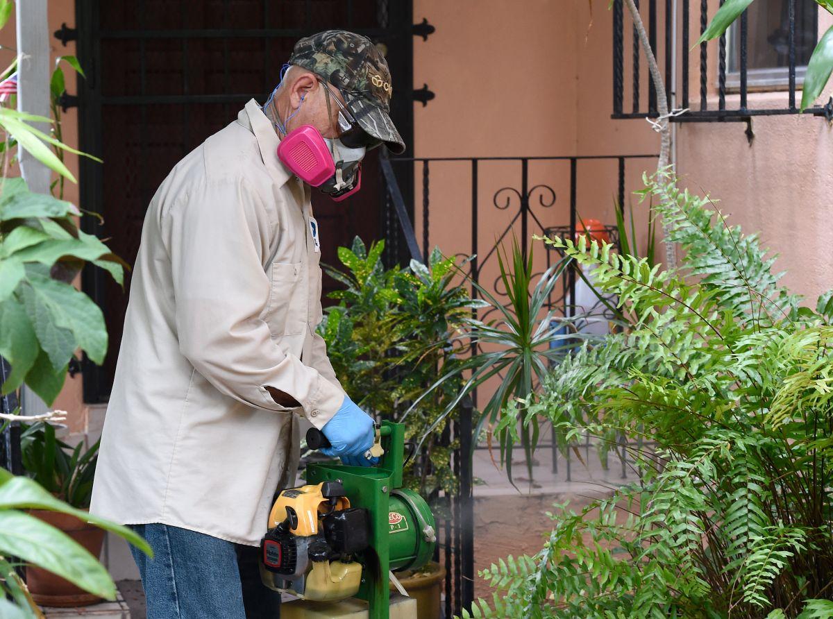 Confirman 4 posibles casos de zika en Florida