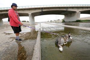 Si tocas el agua del Río Los Ángeles, procura lavarte las manos