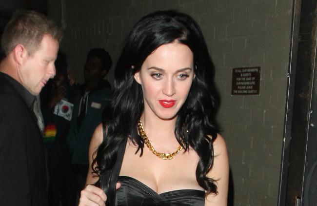 Katy Perry enloqueció a sus fans presumiendo una foto de su trasero