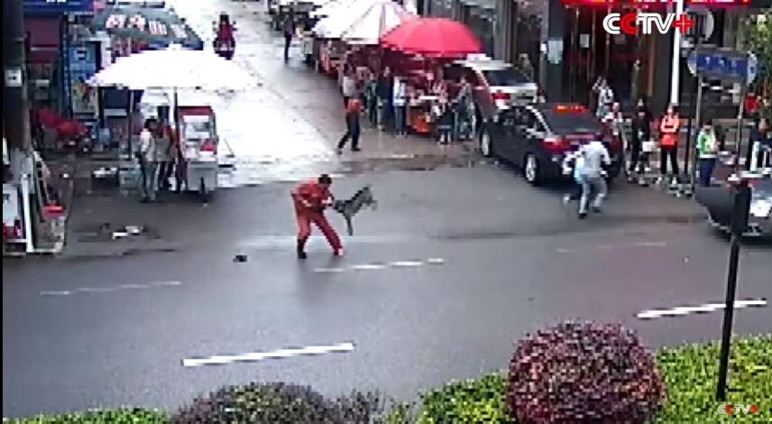 Video: ¿Qué le pasó a este perro que atacó a más de 20 personas en China?