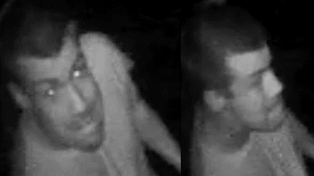 Intentaron robar una residencia en Malibú y fueron captados en video