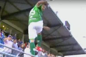 Video: Futbolista le propina una patada a un hincha y se lo llevan detenido