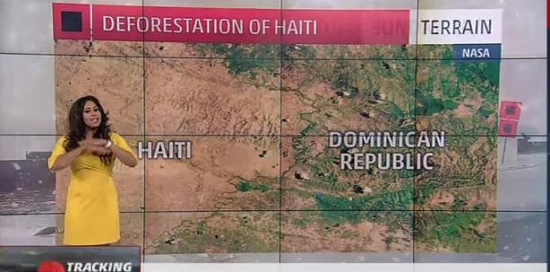 Delgado dijo que los  niños haitianos se comen los árboles.