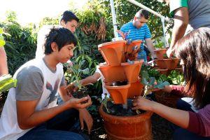 Los inmigrantes mexicanos que hicieron florecer todo un distrito escolar en L.A.