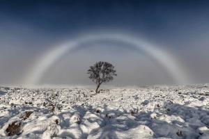 ¿Dónde y por por qué apareció el increíble arcoiris blanco?