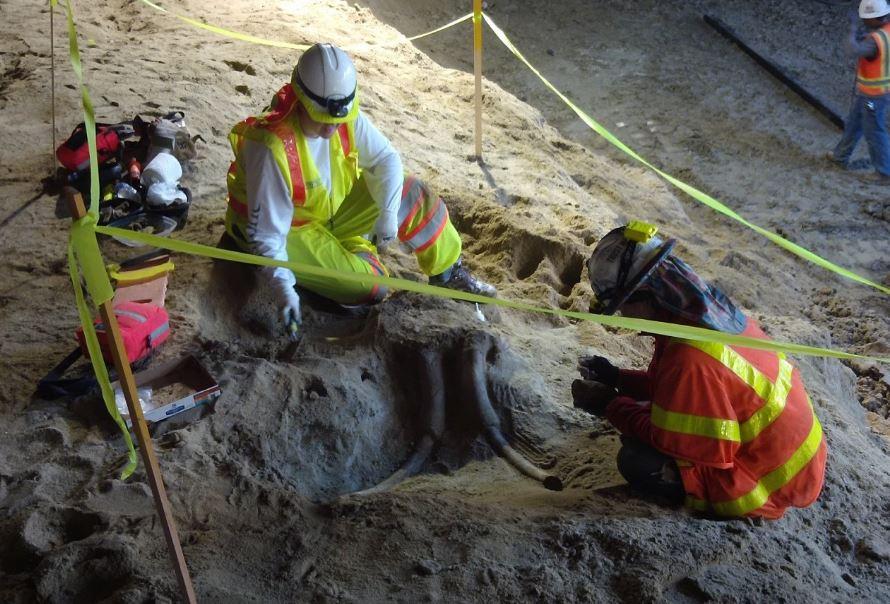 Los excavadores de la nueva ruta de Metro se llevaron tremenda sorpresa.