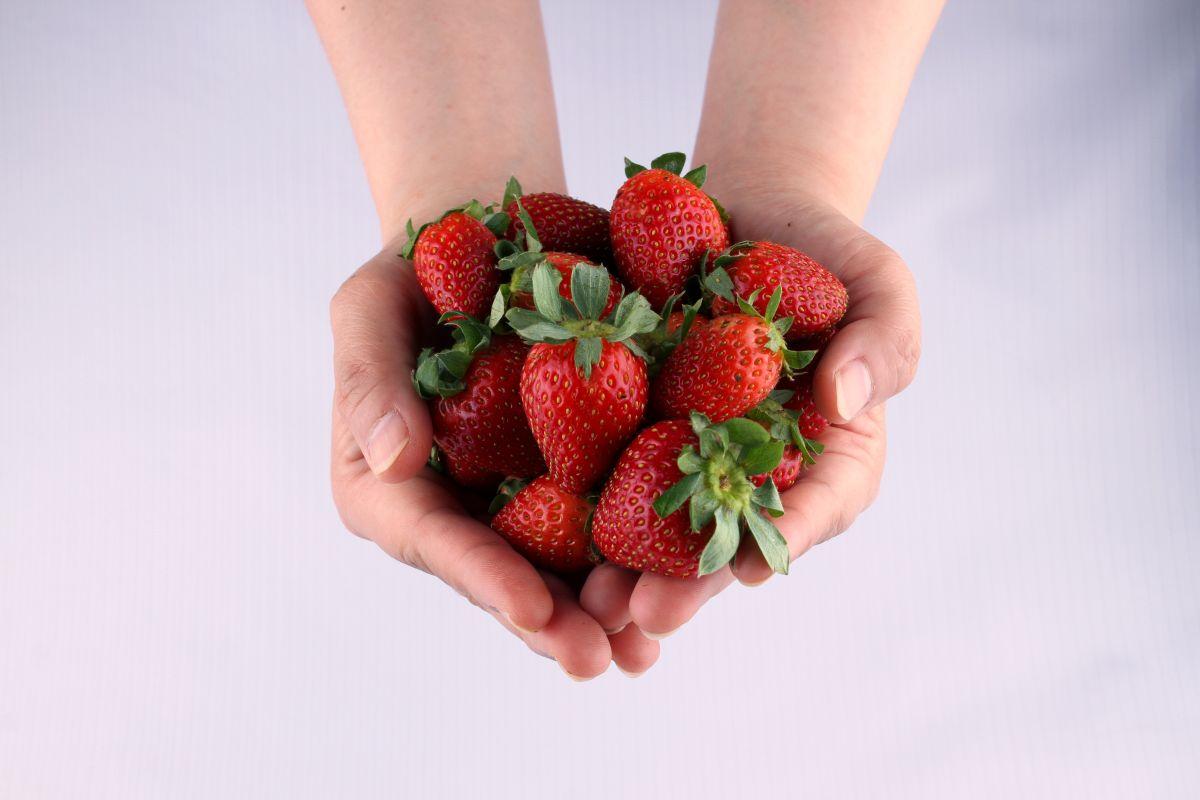 7 alimentos para un corazón sano