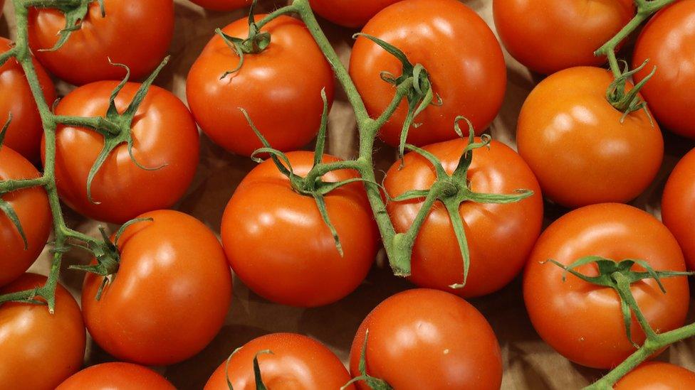 Cuál es el secreto del tomate que lo hace tan popular