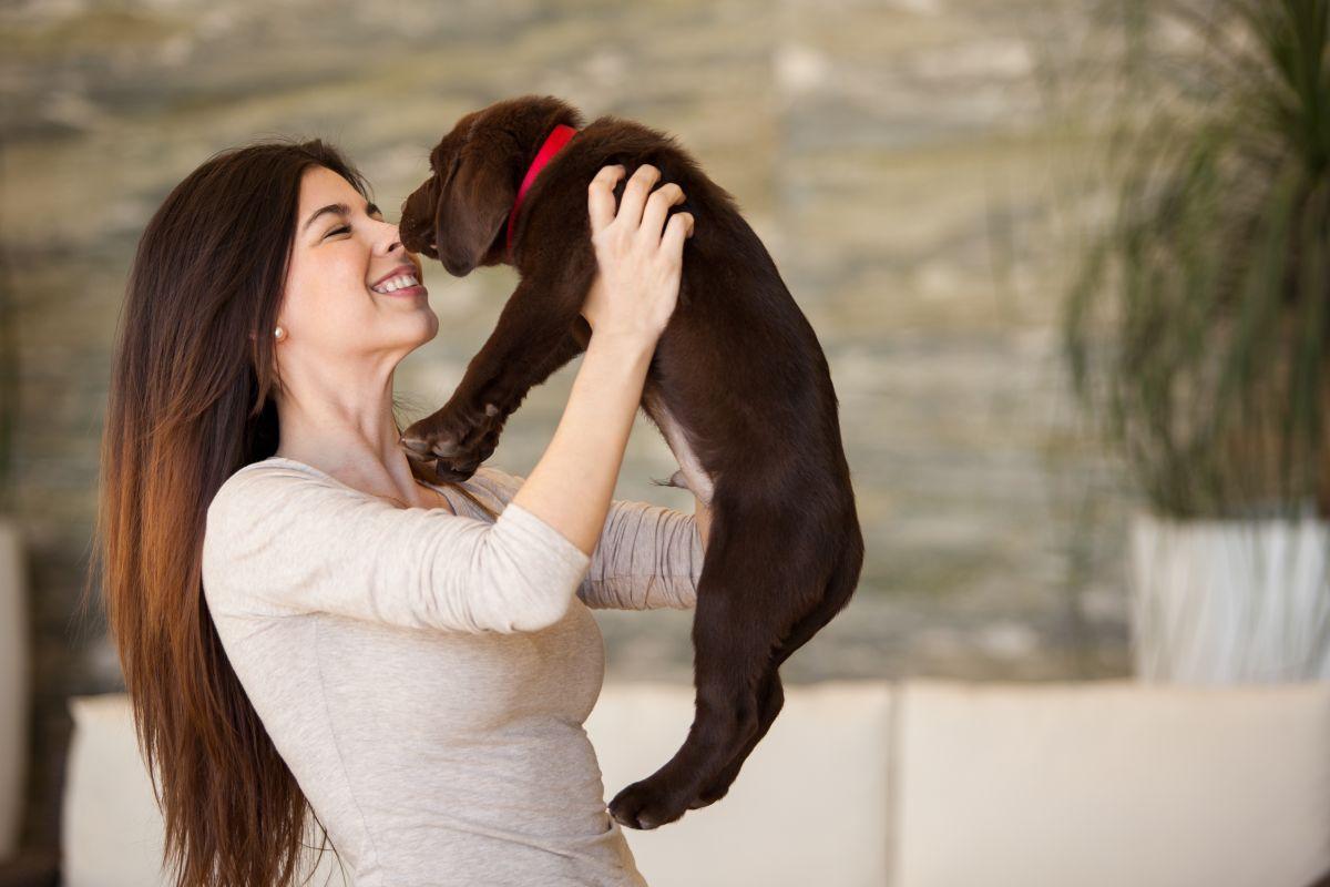 Las mascotas: medicina de cuatro patas para la salud física y mental