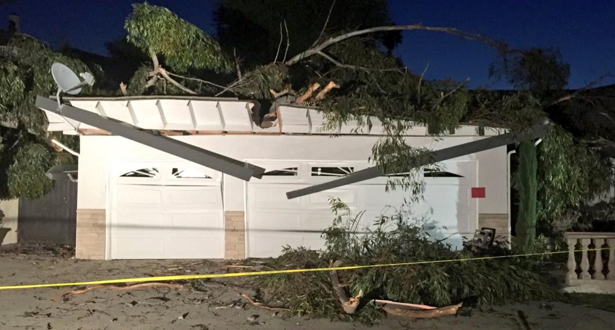 Un barco destrozado, árboles caídos y accidentes por doquier: peligrosos vientos acechan a sur de California