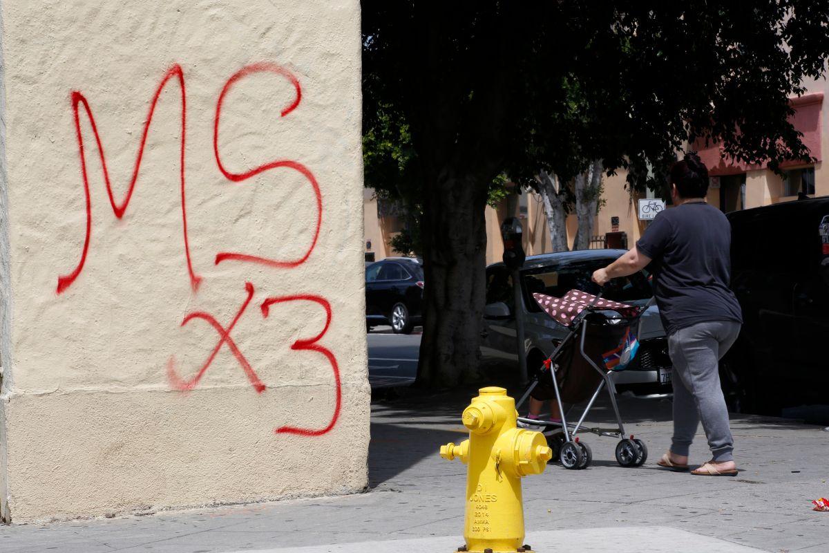 """Anuncio de """"cero tolerancia"""" no impacta a la MS-13, dice activista"""