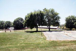 Regalan árboles en Nueva Jersey para mejorar la calidad de vida