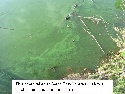 Las autoridades recomiendan a los visitantes del Parque El Dorado East Regional para que tengan precaución.