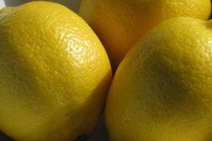 Argentina volverá a venderle limones a EEUU tras 16 años de veto