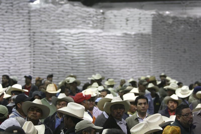 Desaparecen 80 campesinos en Chihuahua tras denunciar explotación laboral