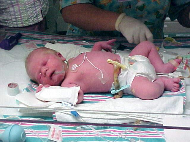 Bebé nace en un vuelo de Spirit y tendrá regalos de por vida