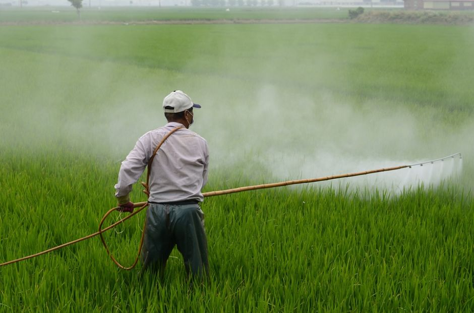 California reconoce oficialmente el herbicida glifosato como cancerígeno