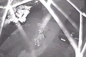 Vídeo muestra a mujer siendo robada y agredida en Long Beach