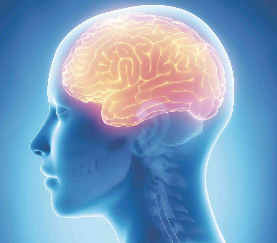 La clave para prevenir o retrasar la demencia