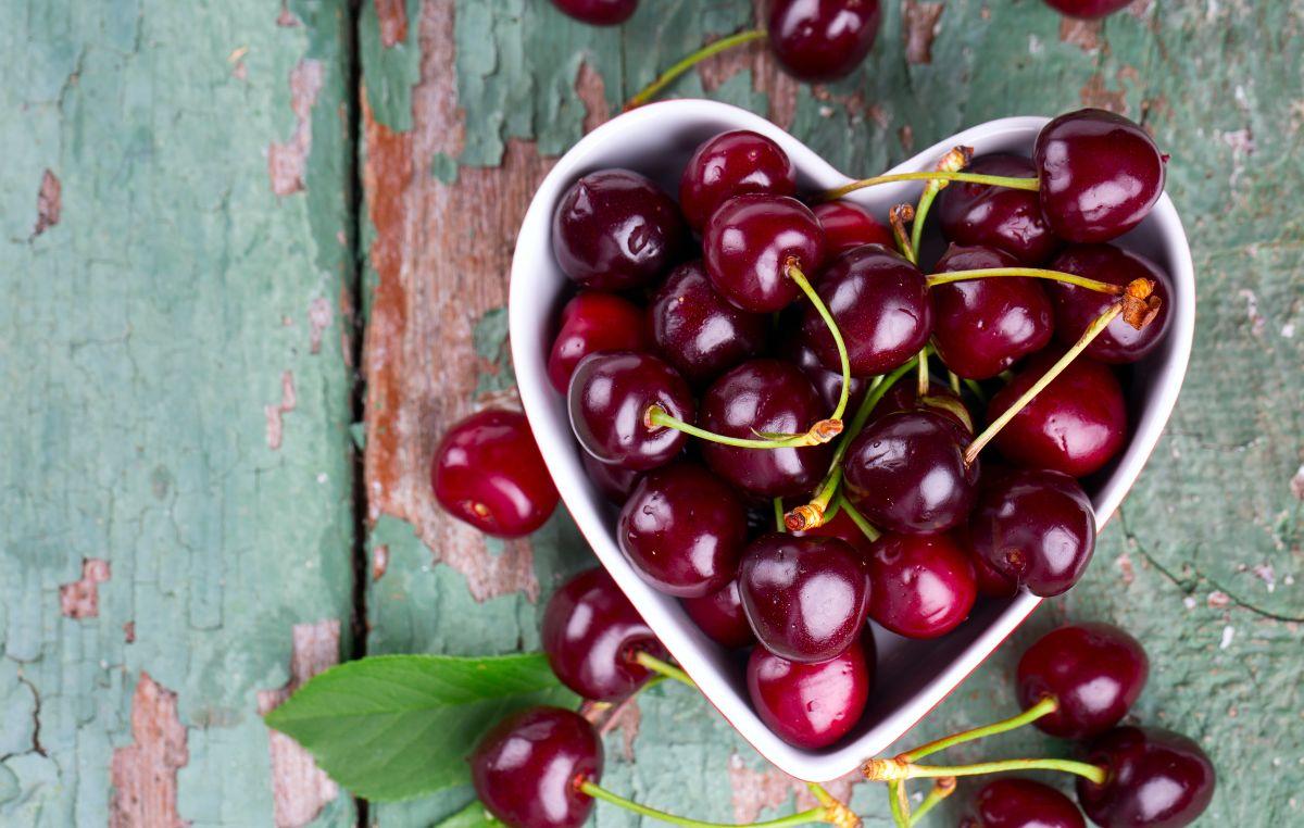 Los Mejores Alimentos Quema Grasa Para Acelerar El Metabolismo La Opinión