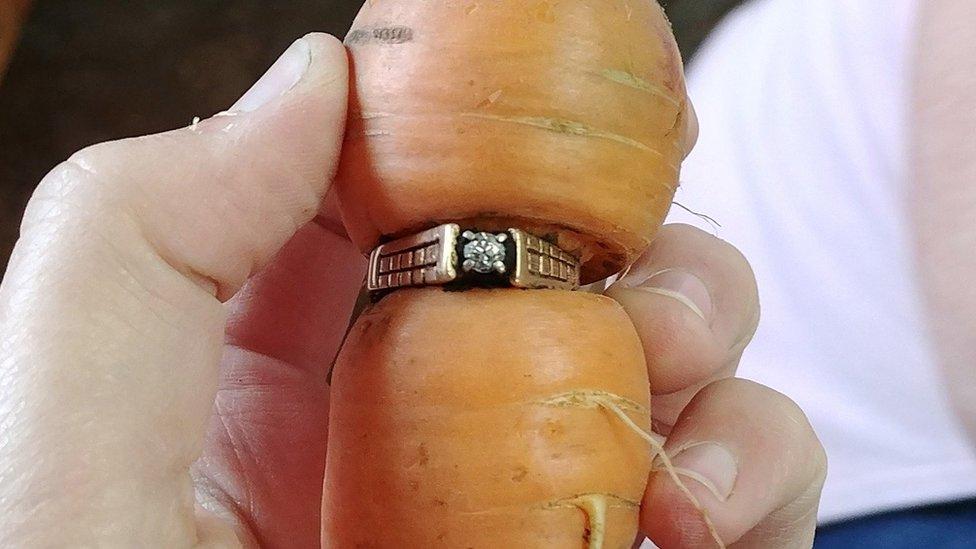 Perdió su anillo de compromiso hace 13 años y lo encuentra ¡en una zanahoria!