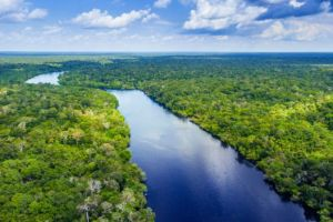 """""""Ríos voladores"""" en Sudamérica que llevan por aire tanta agua como el Amazonas"""