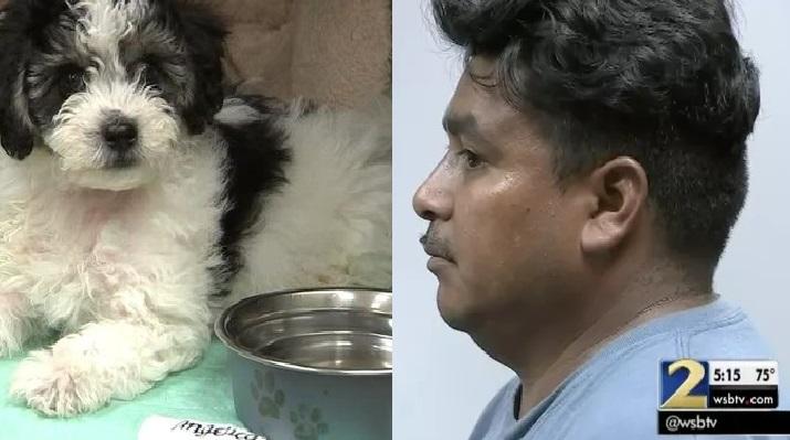 El hombre dejó a su mascota dentro de su vehículo a más de 90 grados Fahrenheit