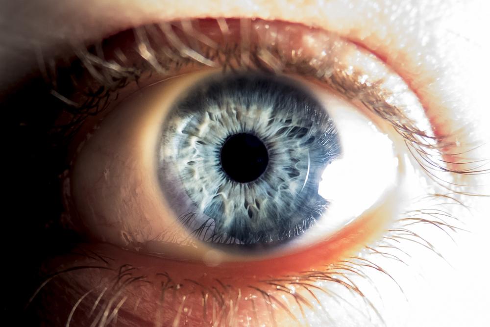 Optografía: Fisiólogos creían que los ojos guardaban la última imagen antes de morir