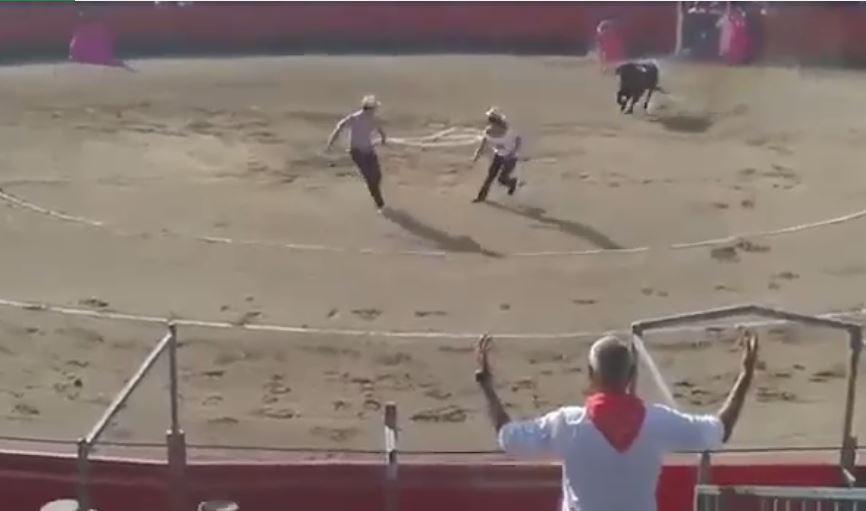 Video: Ingresa al ruedo para defender a un toro y termina cornado